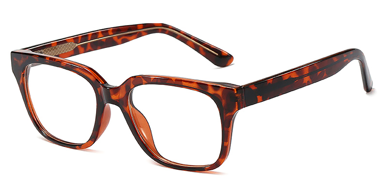 Sage-Full-rimmed square glasses with leopard prints TR90